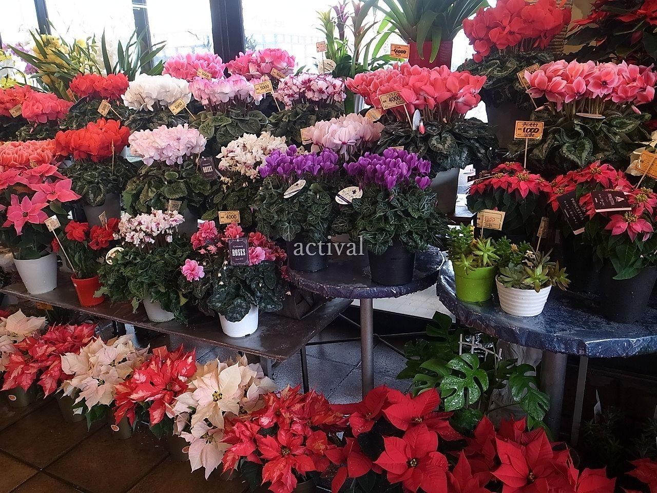 越谷・街のお花屋さん くろだ生花店のご紹介 ―ア・ス・ヴェルデのテナント紹介②―