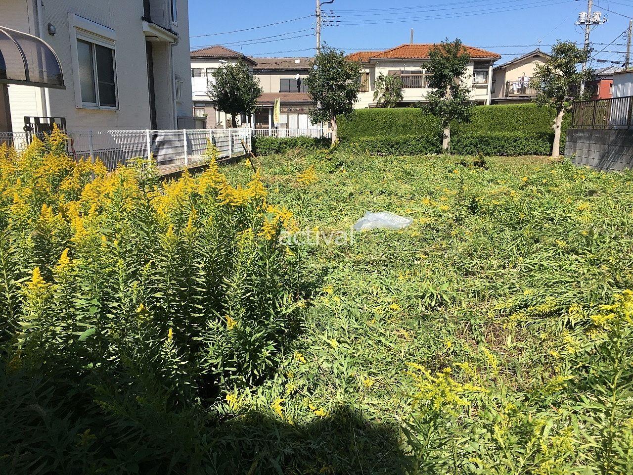 土地の雑草を一部刈った後です!