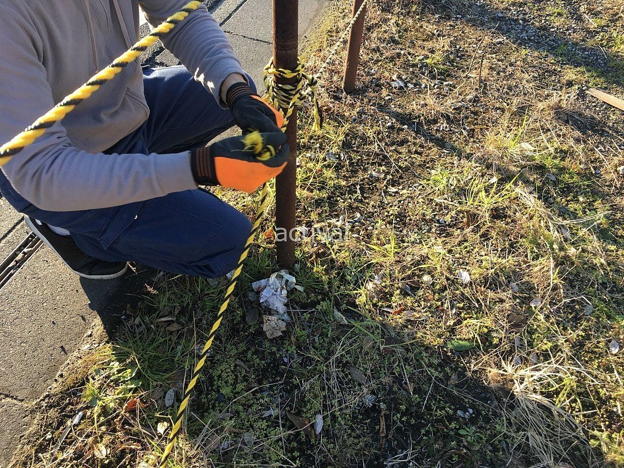 トラロープを弛まないように杭にしっかり結びます!