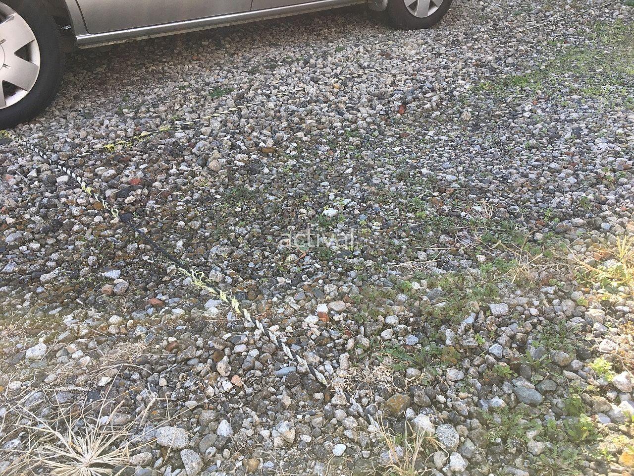 に月極駐車場の駐車区画割りのためのロープが解れています!
