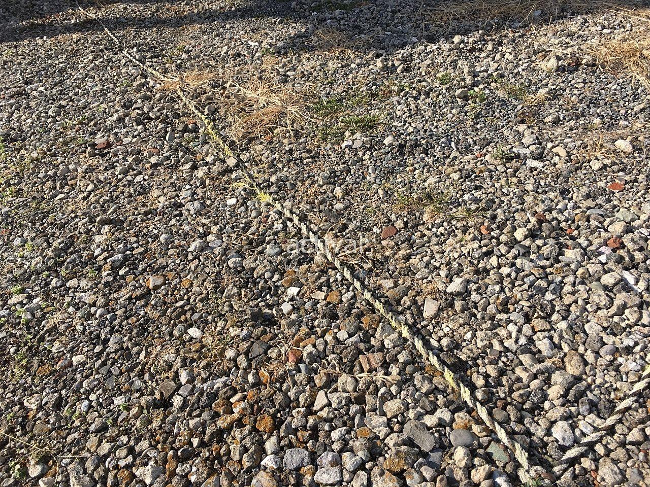このように月極駐車場の駐車区画割りのためのロープが劣化しています!