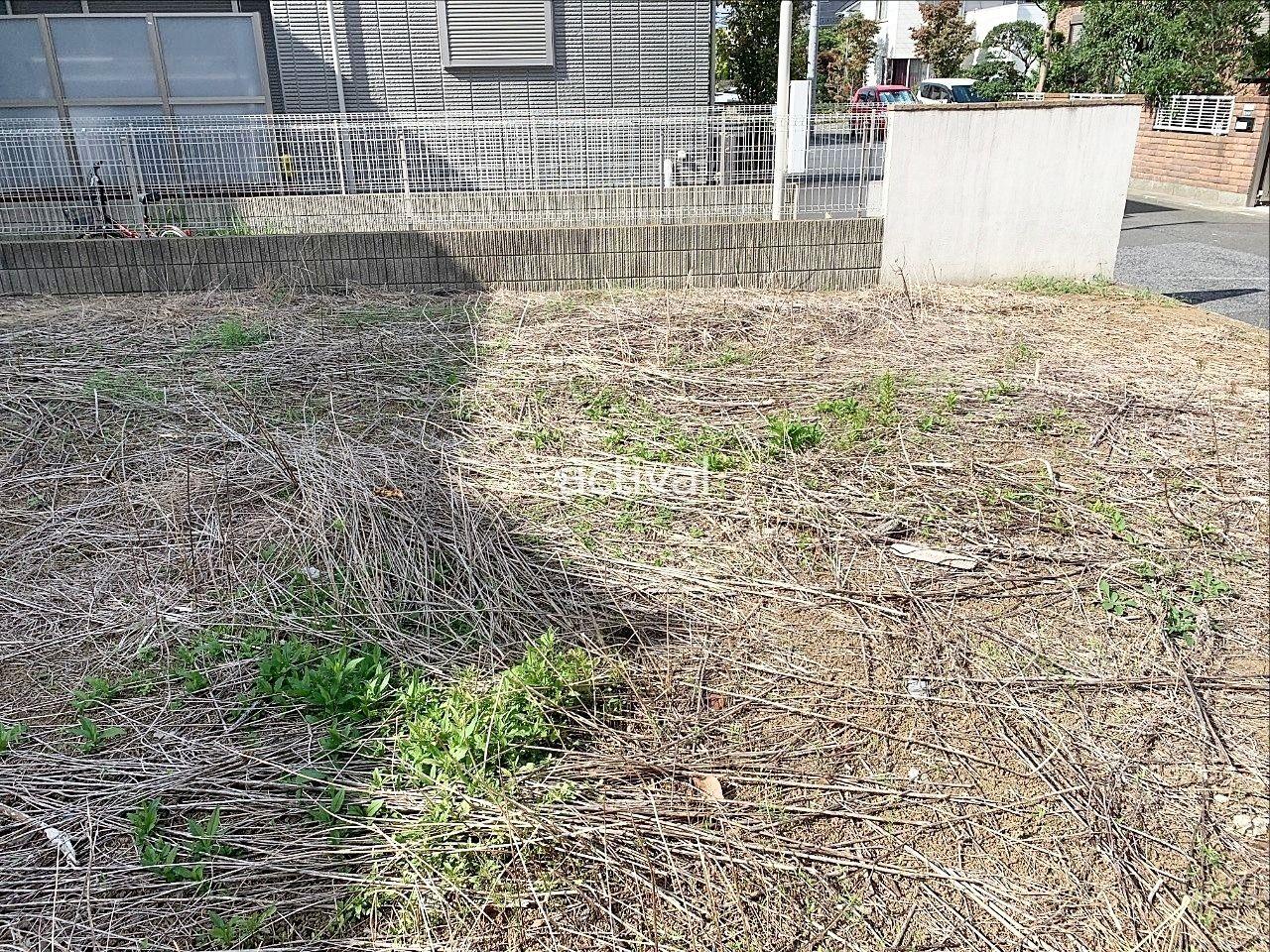 空き地には9月下旬でも雑草が生えています。