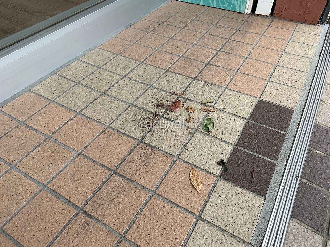 ア・ス・ヴェルデⅡ週貸し店舗の外にも落ち葉がありました。