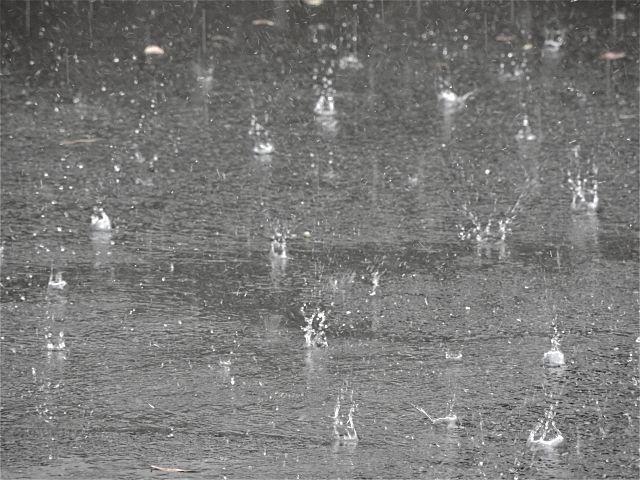 浸水被害が多いエリアにある土地の浸水状況について調査したケース ~不動産売却での事例㊸~