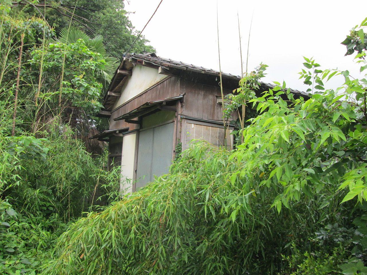樹木や雑草に埋もれそうな空き家です。