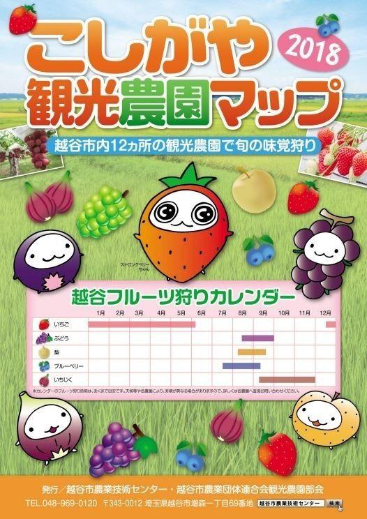 こしがや観光農園マップ2018です!!