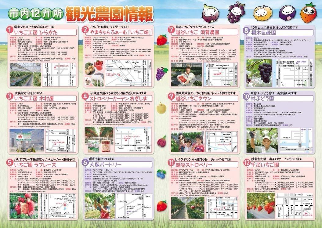 越谷市内12ヶ所にある観光農園の情報です!!