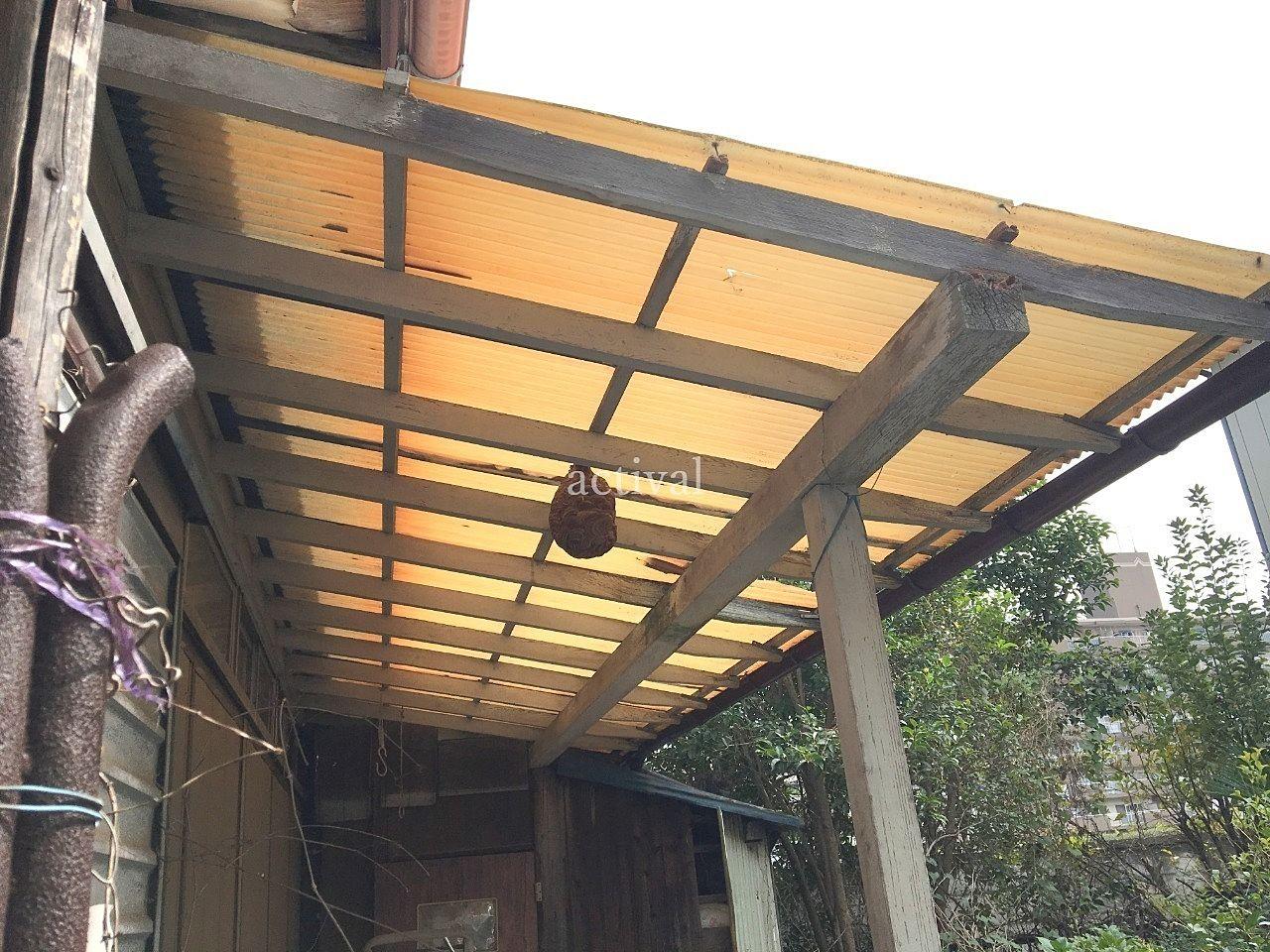 実際に空き家にできたスズメバチの巣です。