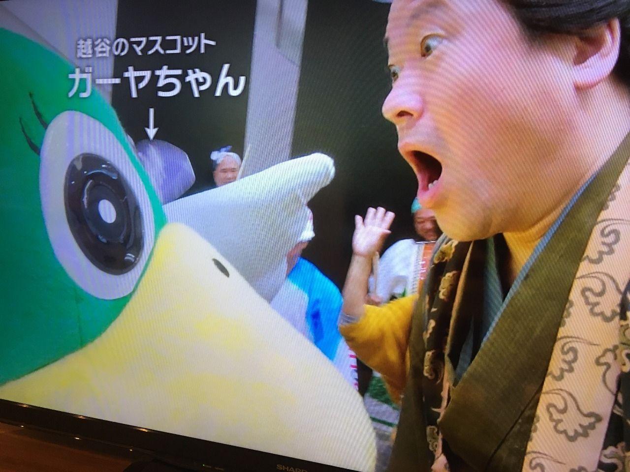 越谷サイコーのドラマには越谷市の特別市民ガーヤちゃんも登場しました!!