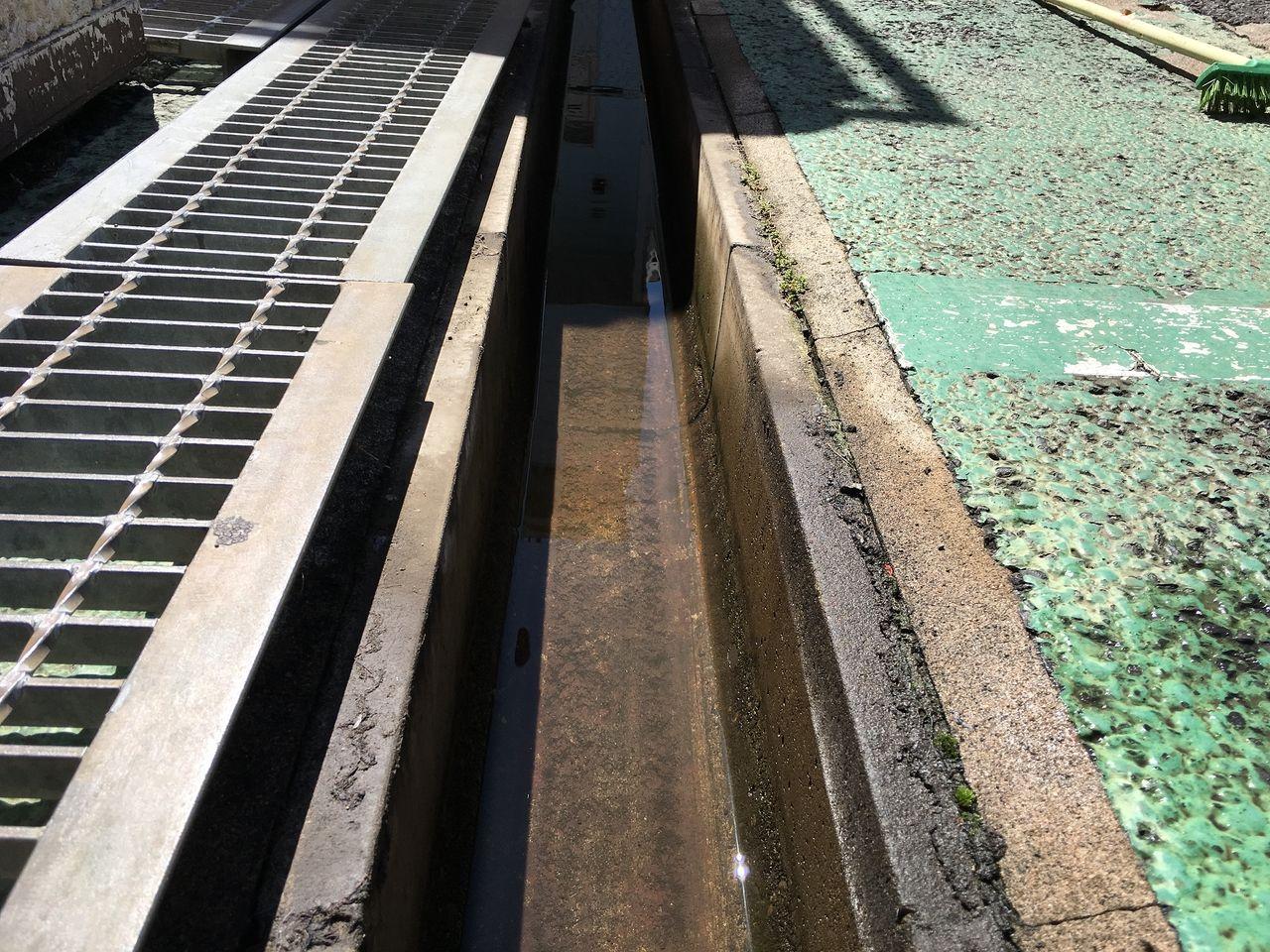 ア・ス・ヴェルデⅡにある清掃後の排水溝です!!